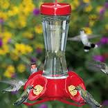 Hummingbird Feeder