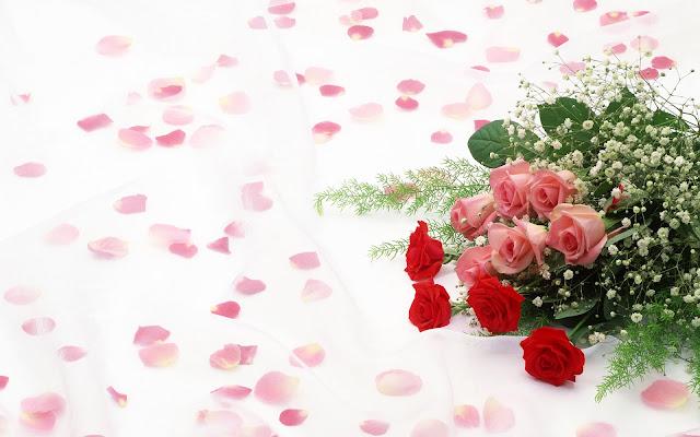 Boeket rode en roze rozen op een witte achtergrond