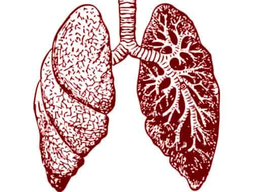COPD - Natural cures of Chronic Obstructive Pulmonary Disease - All