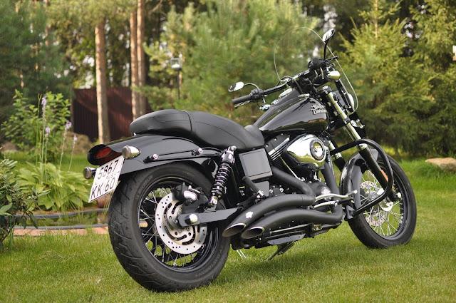 Harley Davidson Bike Garden pic