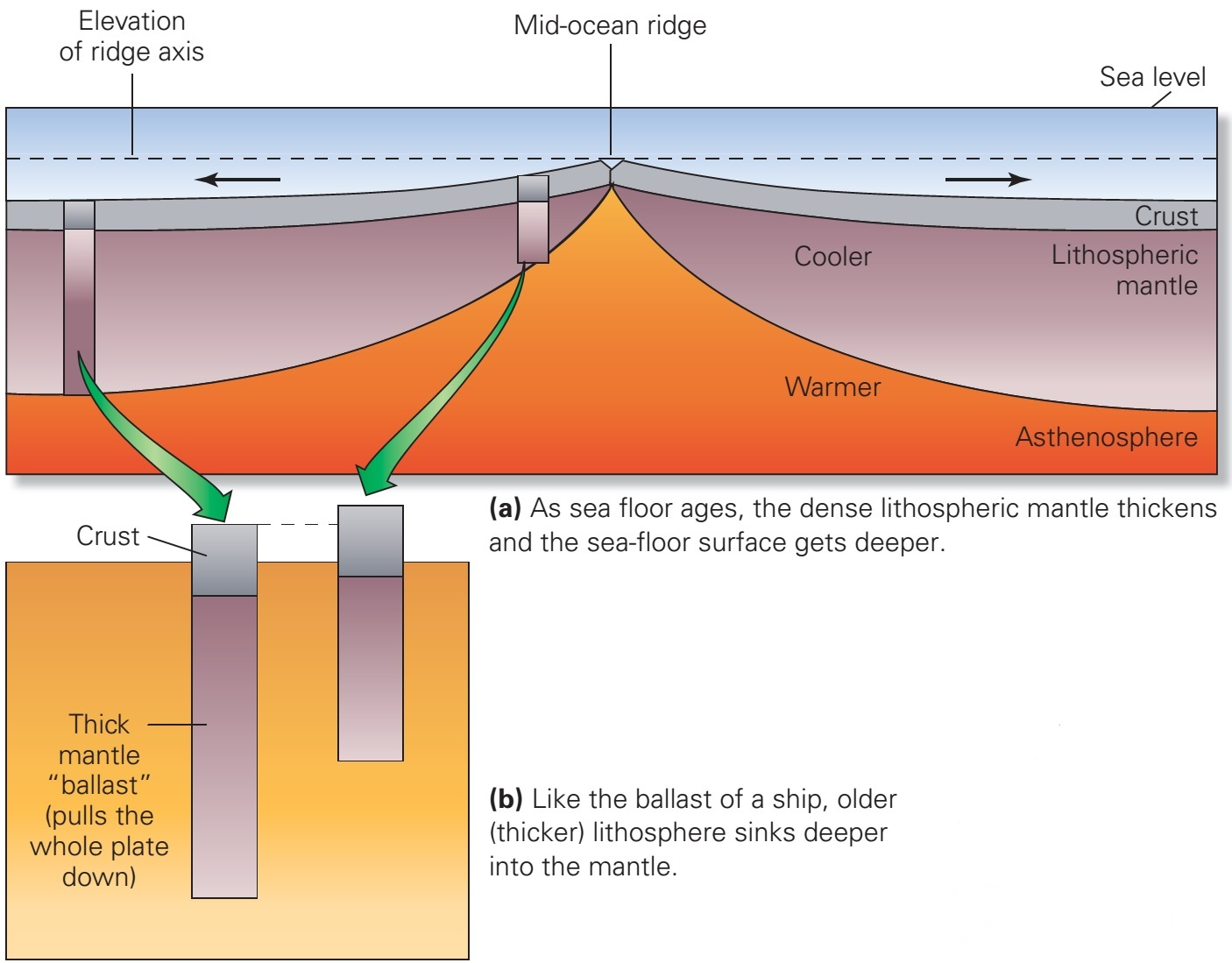 11 sea floor spreading is thought to occur at what type of for Deep ocean floor definition