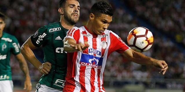 Palmeiras vs Junior EN VIVO ONLINE - Copa CONMEBOL Libertadores 2019.