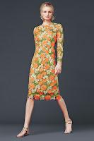 Moda para el otoño 2015 de Dolce & Gabbana