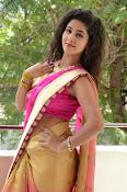 pavani new photos in saree-thumbnail-31