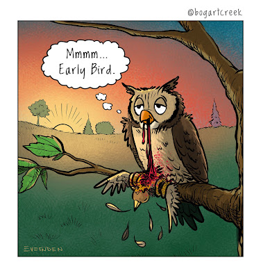 Funny Owl Early Bird Catches The Worm Cartoon
