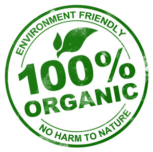 Le cuir végétal plus écologique !   Organic Topic   Your Green Diary ! b4e8926e700