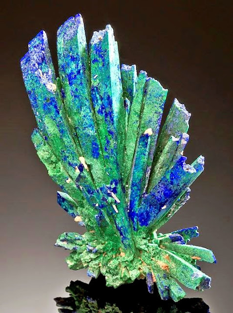 Incredible Spray of Azurite Crystals With Ps to Malachite
