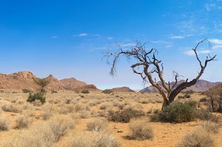 Wandering in the Desert: Lessons from Joshua 1