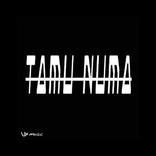 VX Music- Tamu Numa