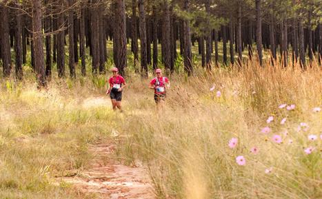 Adventure Lisa's Forest Run 2015 Run 2015