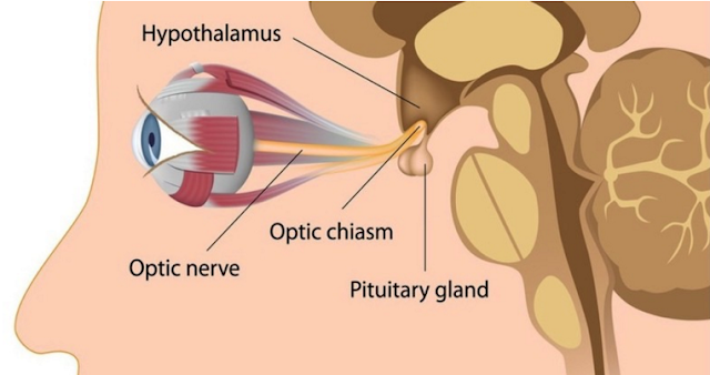 améliorer votre vue sans chirurgie ou des lunettes.