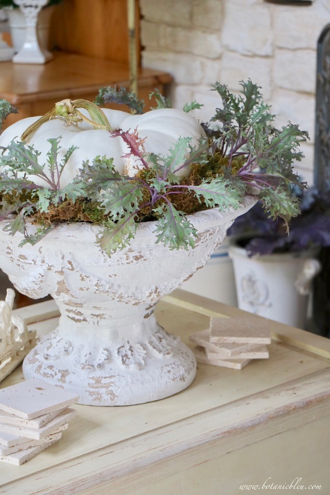 french inspired fall living room ornamental ruffled kale in french style urn