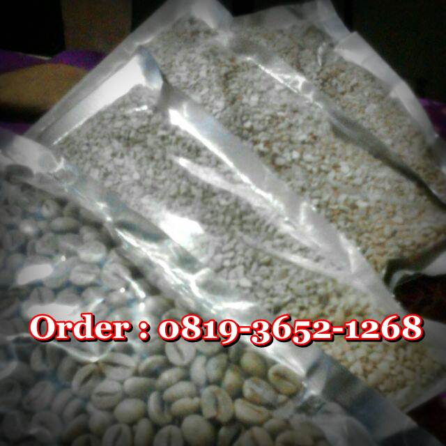 Harga Green Coffee Asli Indonesia