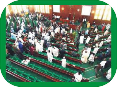 House of representative