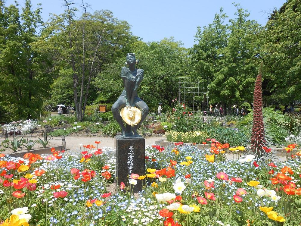 japan in july et autres saisons kyoto promenade au jardin botanique. Black Bedroom Furniture Sets. Home Design Ideas