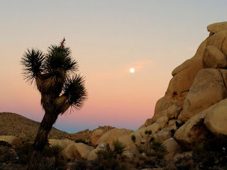 Moonrise as seen from Ryan Mountain Trail, Joshua Tree National Park
