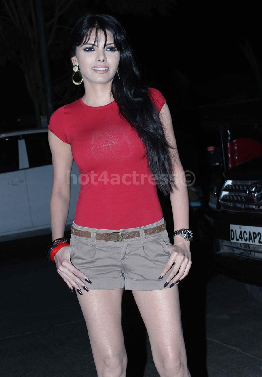 Actress Sherlyn Chopra Big Breast Photos - Hot 4 Actress-5142