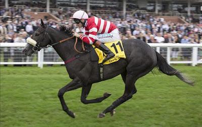 Nunthorpe Stakes Winner