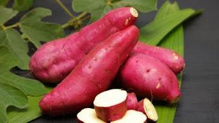 manfaat ubi jalar bagi tubuh
