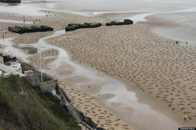 http://www.huffingtonpost.com/2013/09/27/fallen-9000-sand-stencils-dday_n_4003959.html