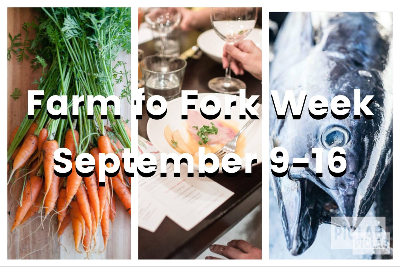 To Market, To Market with San Diego Foodstuff: 2018 Fall San