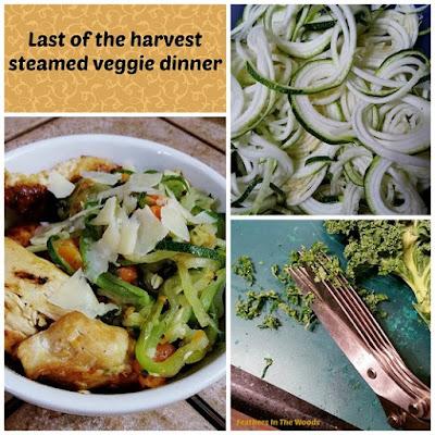 Harvest veggie steamer bowl, healthy dinner