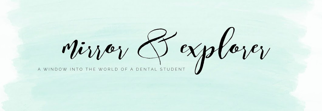 Day 259: Three Trimesters Into Dental School! | Mirror and