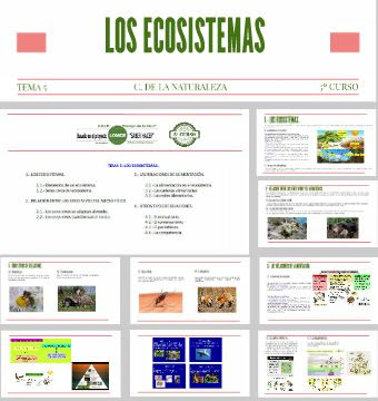 https://prezi.com/ibbdkq_nwybj/c-naturales-5o-curso-tema-5-los-ecosistemas/
