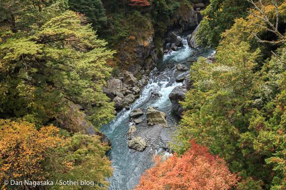 つり橋から多摩川を見下ろす