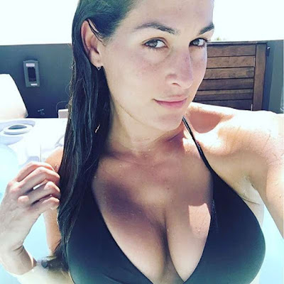 Nikki Bella Hot and Sexy HD Wallpapers