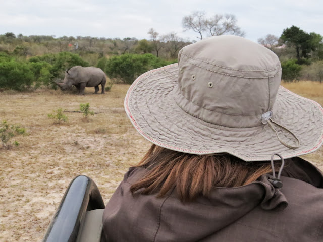 Rhino sighting on a safari in South Africa in Sabi Sand Game Reserve