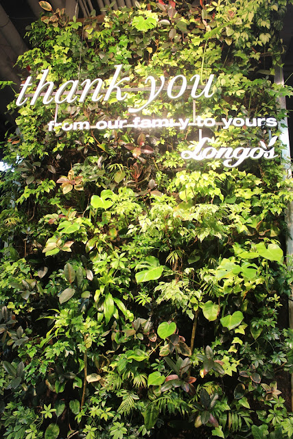 A green wall at Longo's supermarket in downtown Toronto last year - remarkable that it was indoors and in the basement