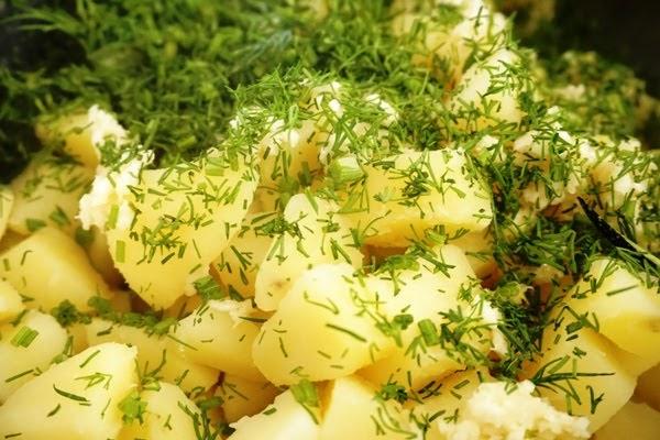 sałatka ziemniaczana z koperkiem i czosnkiem, co przygotować na grilla