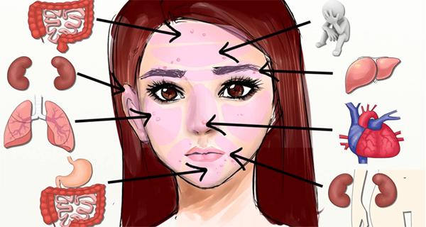 Chaque zone de visage est liée à un certain organe du corps