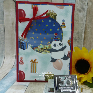 Party Panda Birthday Memories Shaker Card