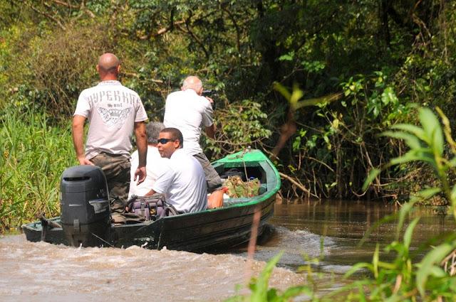 Amazonewoud Frans-Guyana