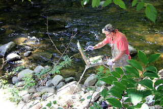 Bob Norieka paints along the banks of the Pomperaug River.