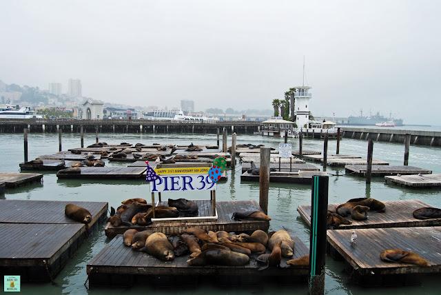 Pier 39 en Fisherman's Warf, San Francisco