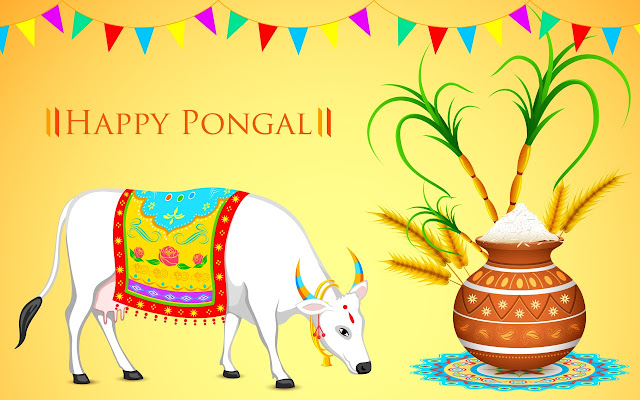 Happy Pongal HD Wallpaper for whatsapp
