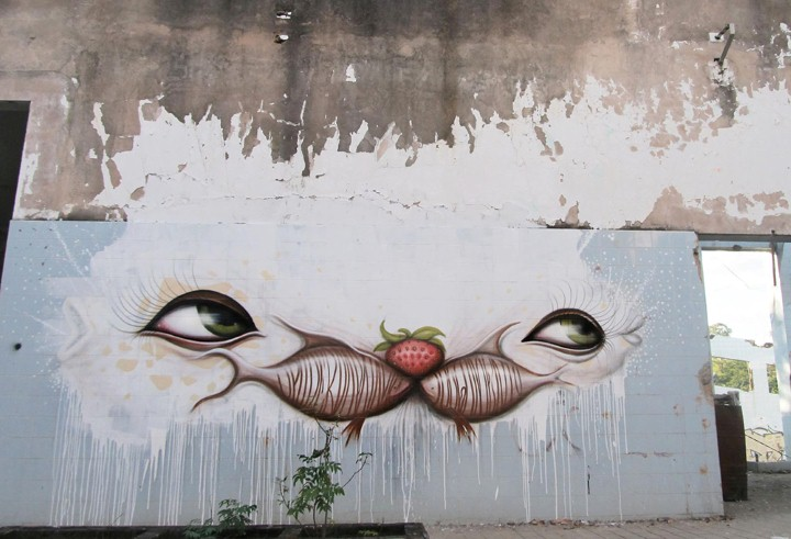 Andre Muniz Gonzaga. Street Art художник 29