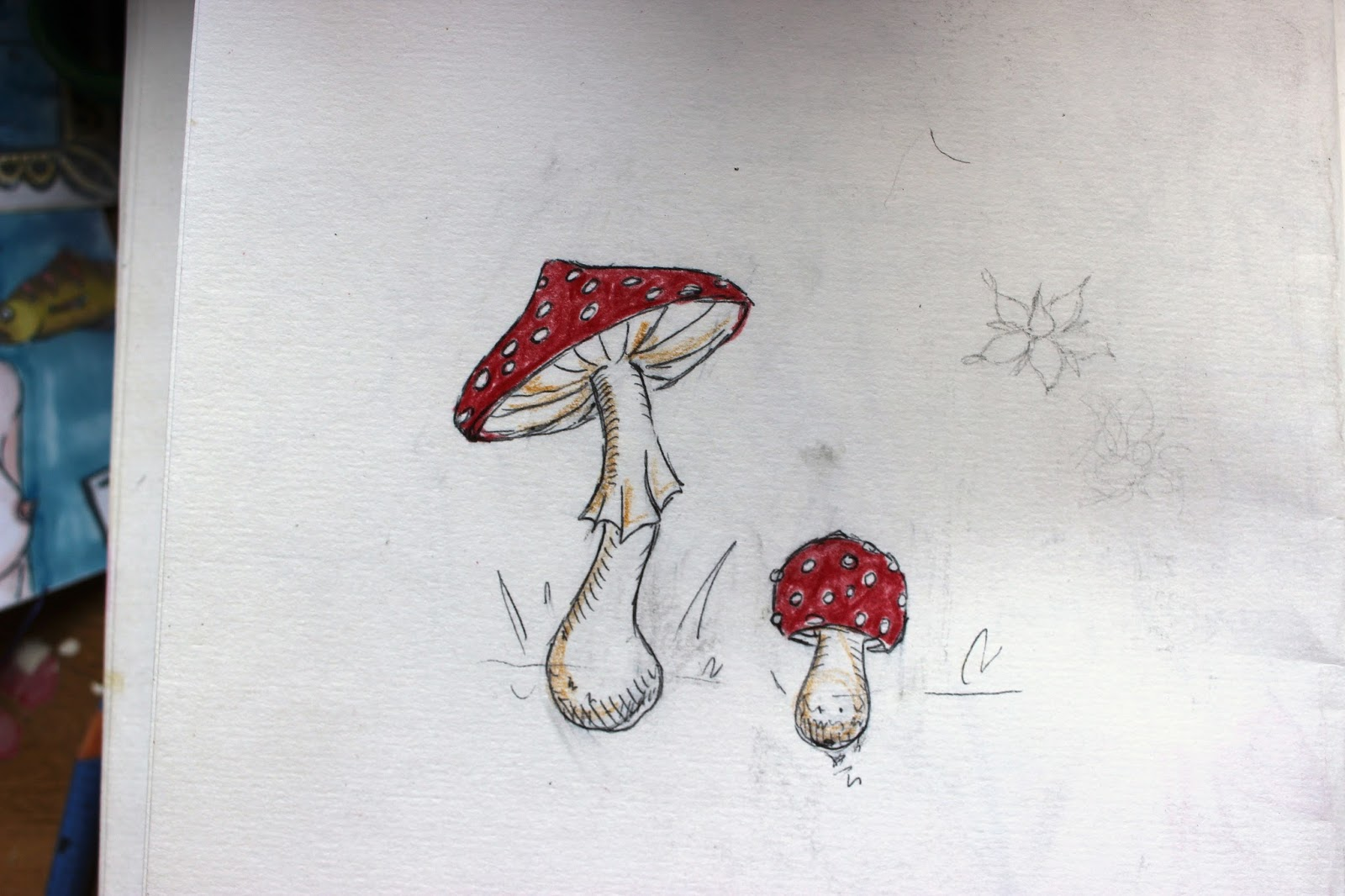 Sketchpad Notebook Sketch Drawing Pencil Colour Mushroom Toadstool