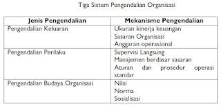 Sistem Pengendalian Organisasi