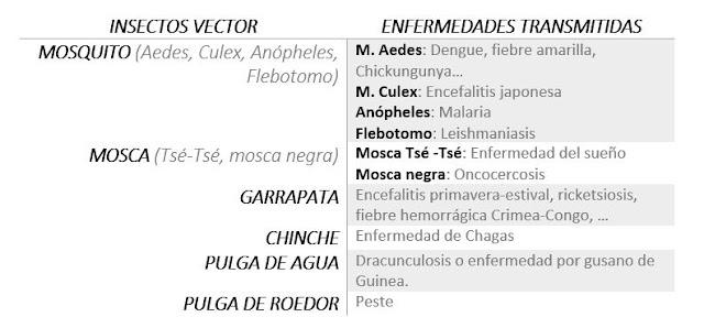 Tabla con Ejemplos de enfermedades transmitidas por insectos
