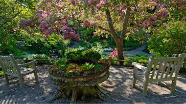 Reford Gardens: Festival de Jardines de Métis 2014