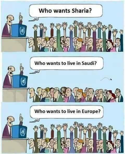 EUROPE%2B%25283%2529.jpg