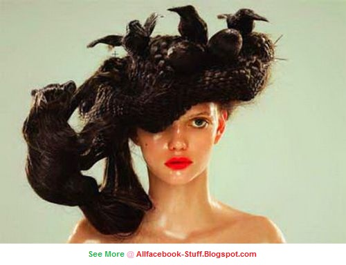 Fun And Entertainment: Most Amazing And Funny Women Hair Style