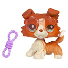 Littlest Pet Shop Purse Collie (#1542) Pet