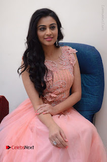 Actress Neha Hinge Stills in Pink Long Dress at Srivalli Teaser Launch  0115.JPG