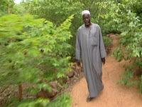 Yacouba Sawadogo : Lelaki Yang Menghentikan Badai Padang Pasir