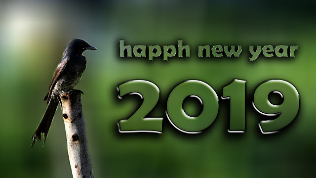 happy new year 2019 images download | new year 2019 | Happy New Year images 2019, #aim2photography